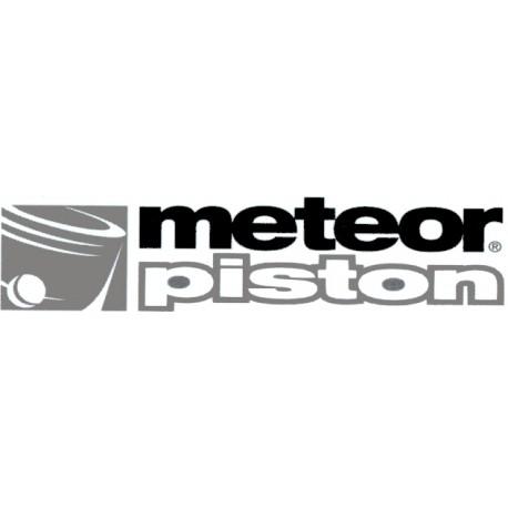 KIT PISTON METEOR YAMAHA TZ 250 1981/1984 55.96MM